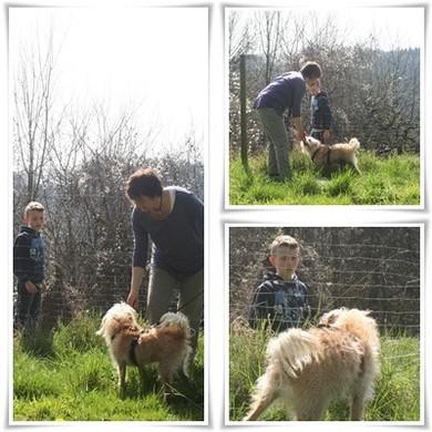 Kontakt Hund See, Sandra Bentele, Kunden Hundezentrum Bodensee