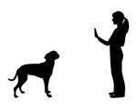 Leistungen Hund See, Beratung Hund See, Hundetraining Baden Württemberg